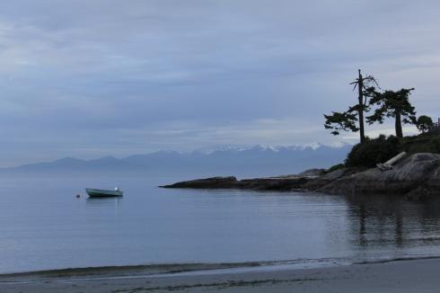 A morning beach wander. (Jenna Tenn-Yuk)